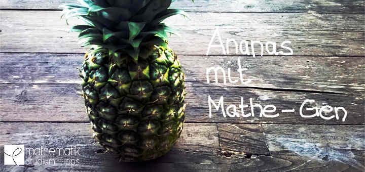 Fibonacci Ananas